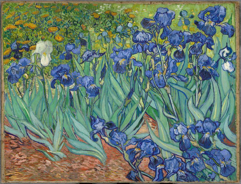 Van Gogh Irises-Vincent_van_Gogh